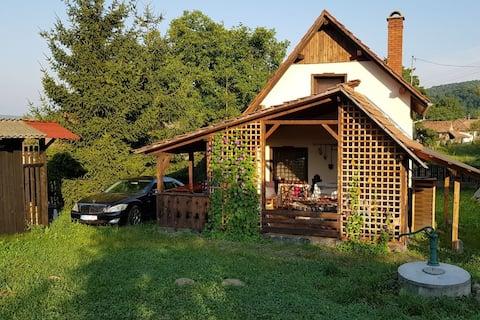 Transylvania village house