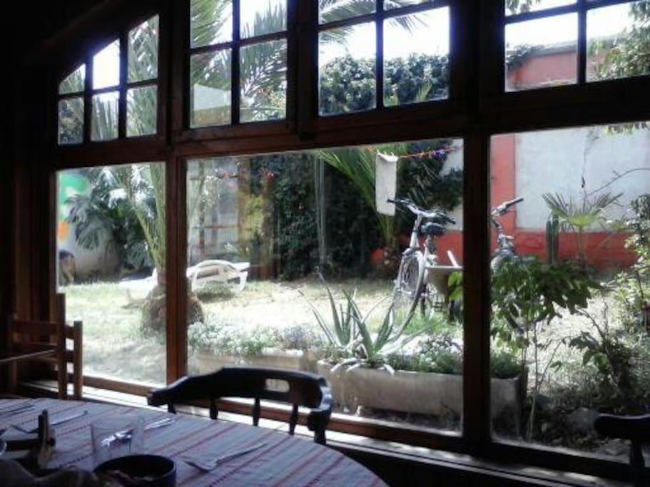 cocina y jardin