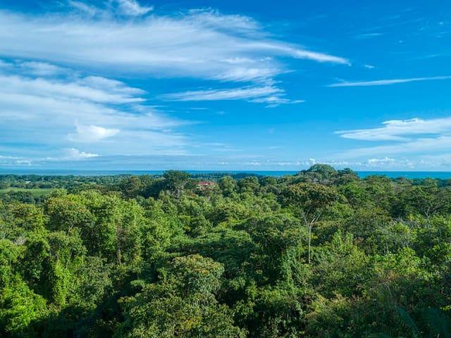 Costa Rica - Uvita  2 homes w/Jungle/Ocean Views