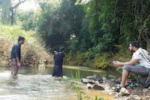 Natural Fish spa @times