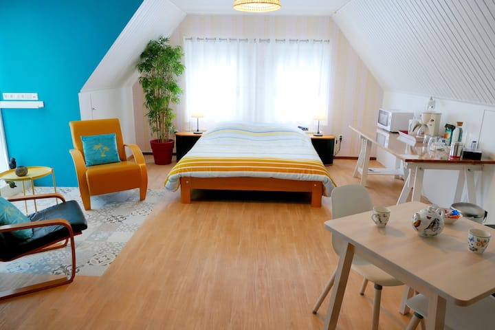 Ruime kamer in Eindhoven met eigen badkamer