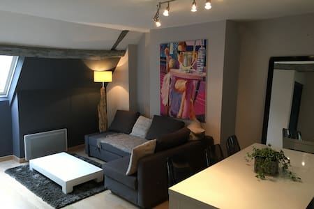 Magnifique appartement Centre-Ville - Blois