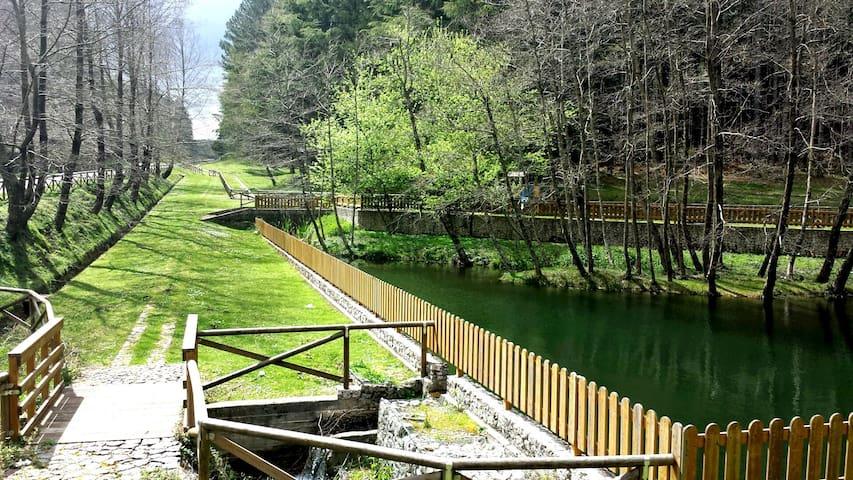 Casa Villa Aspromonte - Canolo Nuova - Hus