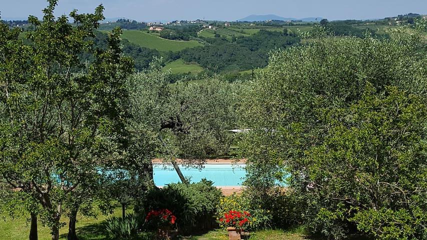 Tognazzi Casa Vacanze - Villa San Martino - Certaldo - Villa
