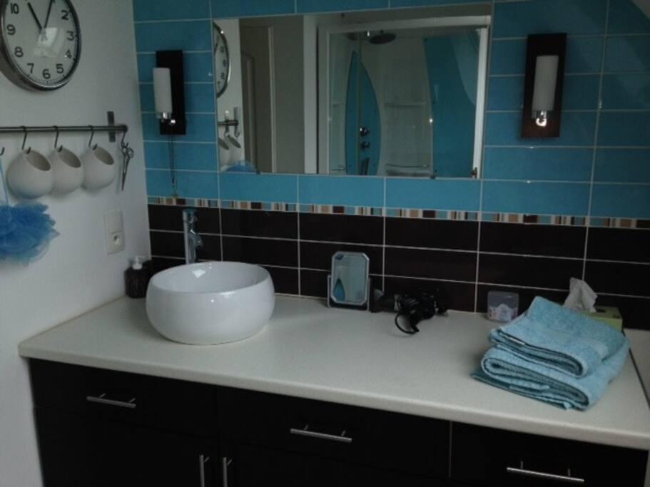 Suite parentale 30 m2 houses for rent in saint for Salle de bain 8 m2