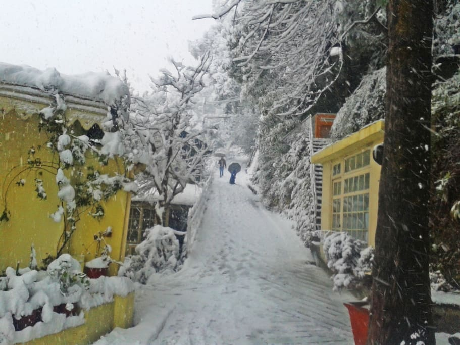 View during winters
