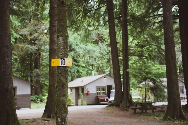 Campsite #10 · Forest Campsite