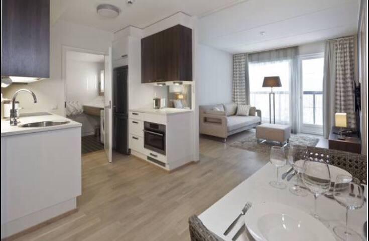 Современные апартаменты у озера - Лаппеэнранта - Apartamento