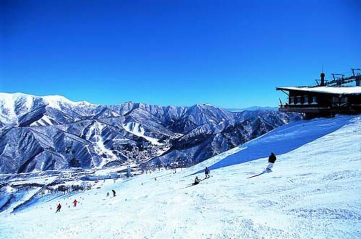Naeba Ski Resort No,8【苗場スキー場までバスで5分】