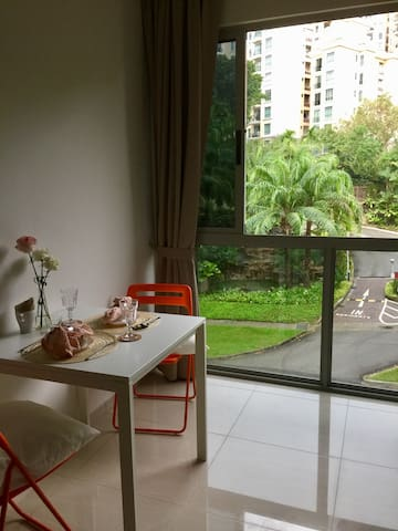 Beautiful One Bed Room Unit in Clarke Quay!