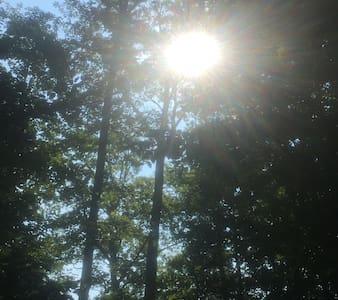 Virginia for Lovers Amazing Views - Newport News