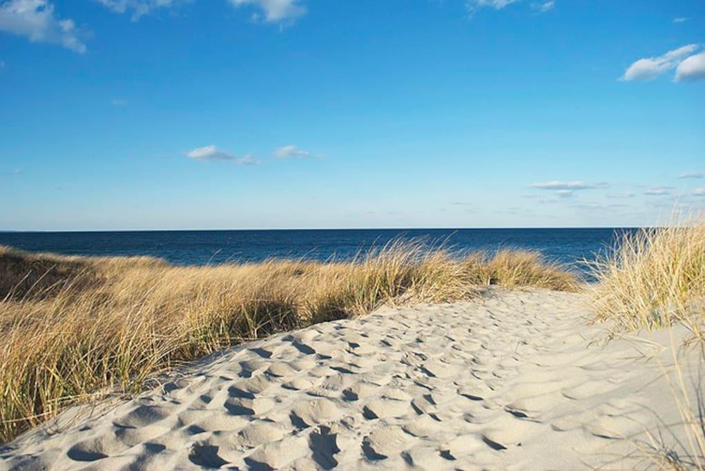 Beach house e sandwich beach cape cod case in for Affitto cabina cape cod