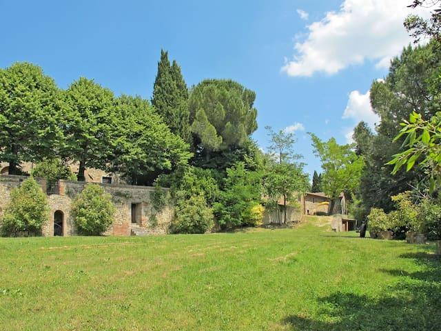 Castello di Fezzana (MSP240)