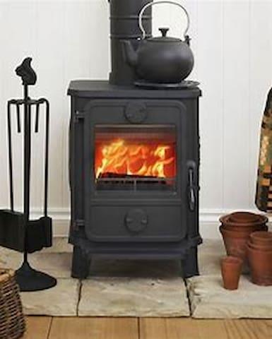 Morso squirrel wood heater