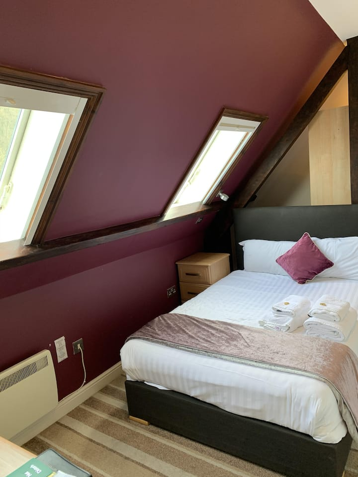 Double room Ensuite with Shower-Mountain View-Room