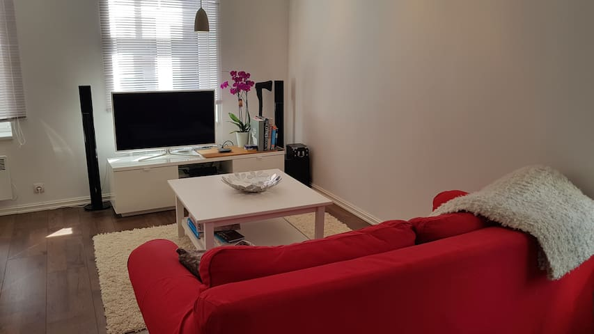 Central 2 room home, 100Mbps WiFi, FREE parking