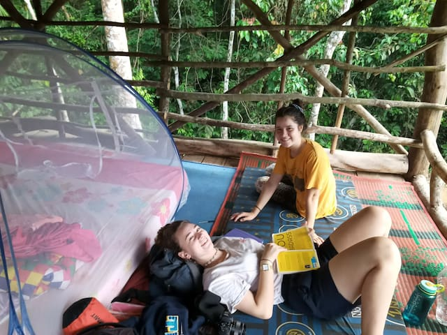 Bukit Lawang ECO nature lovely lodge & treking
