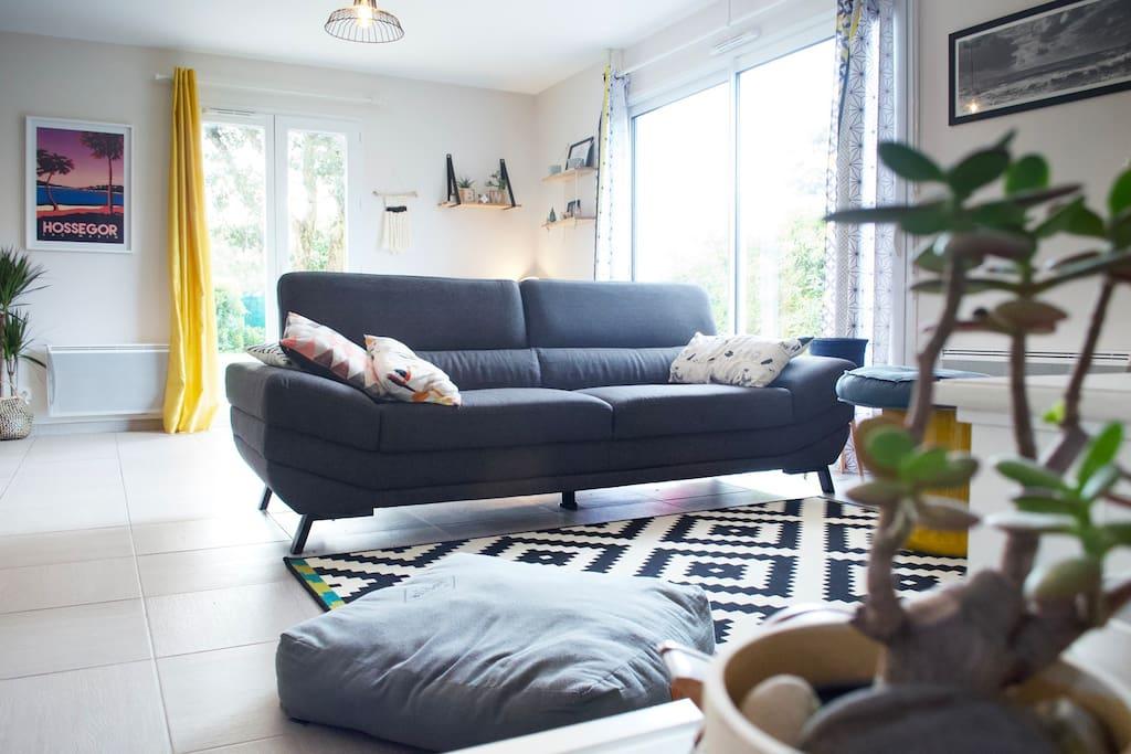 Salon canapé 3 places + Télévision