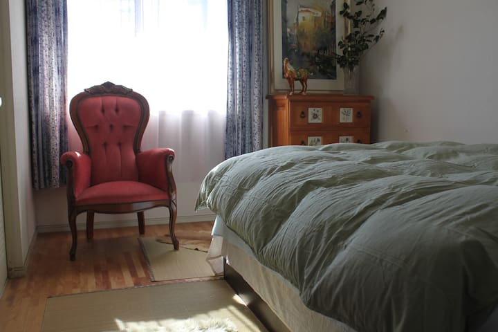 26min直达秋葉原/有天然溫泉/舒適的房間