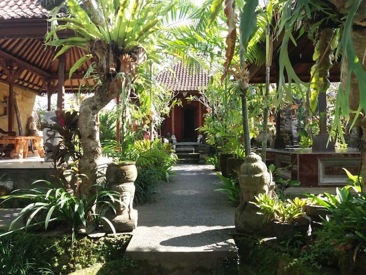 Gianyar Local house with rice field view