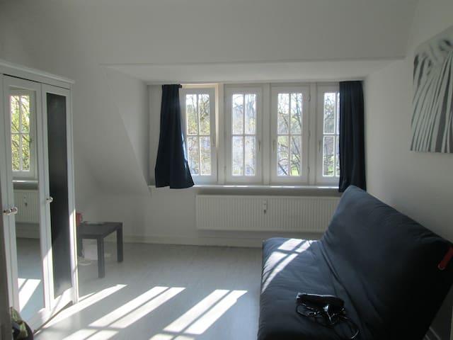 Zimmer in Hamburg Nord Dachgeschosswohnung - Hamburg - Appartement