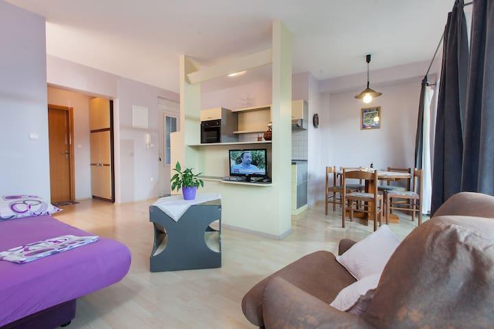 Apartman Montana 1