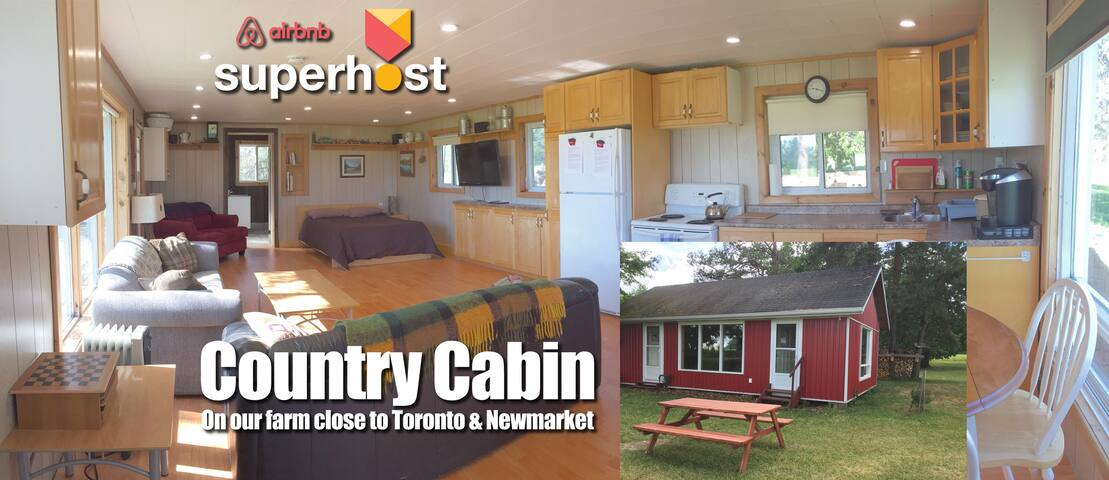 Country Cabin for your Long or Short Stay Toronto