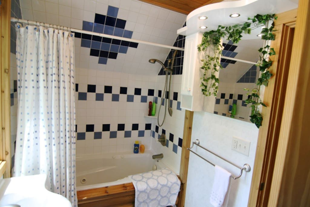 Bathroom complete with jetted tub.