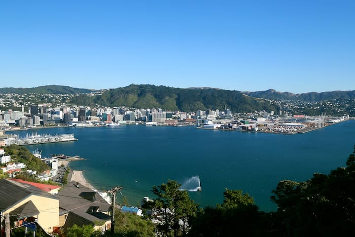 The Most Amazing View & a Great Couples'  Retreat! - Wellington - Apartmen