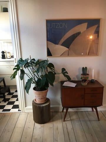 2-værelses lejlighed i midten af Odense