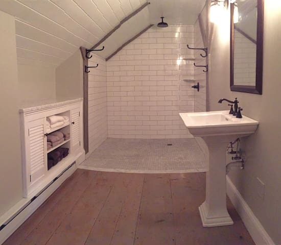 Full bathroom with open spa shower, Fully Renovated and Brand  New!