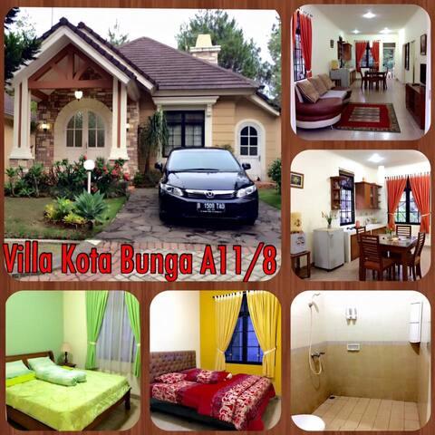 Nila's Villa