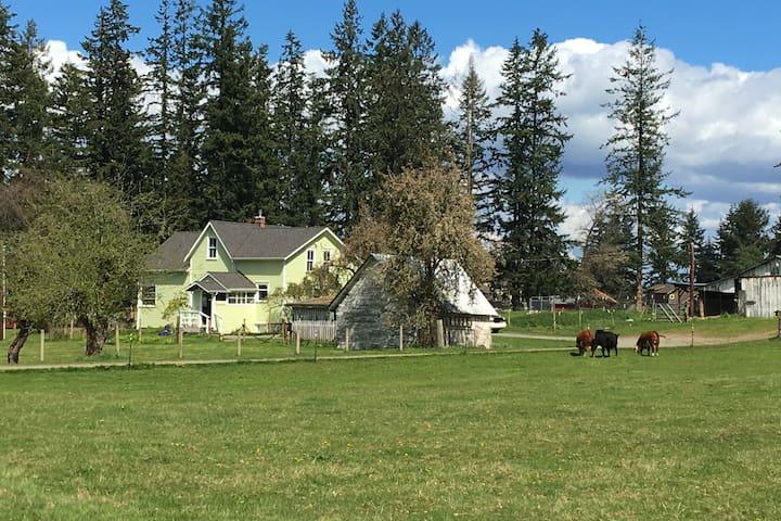 1907 Anderson Farmhouse