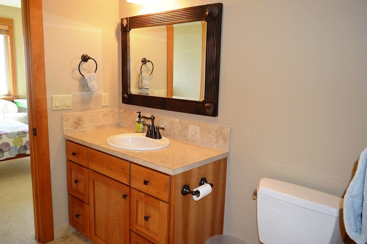 Lower level private bathroom with a large sit down shower and walk-in closet