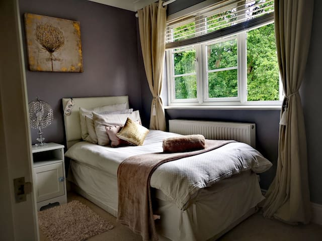 Elegant, Spacious Single Room in an up-market home