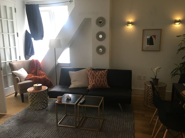 Luxurious, Beautiful, Spacious 2BR in Williamsburg