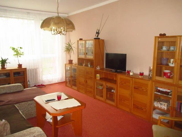 V+L apartment in downtown Ostrava - Ostrava - Apartment