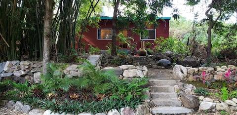 Jardín Secreto a Cerro del Mono