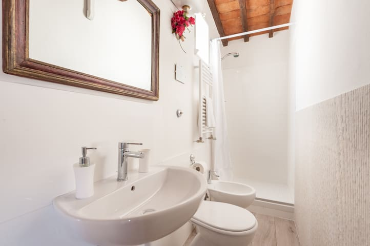 The lovely bathroom with shower