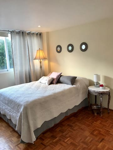 Cozy room w/private bathroom (50mts. from Masarik)