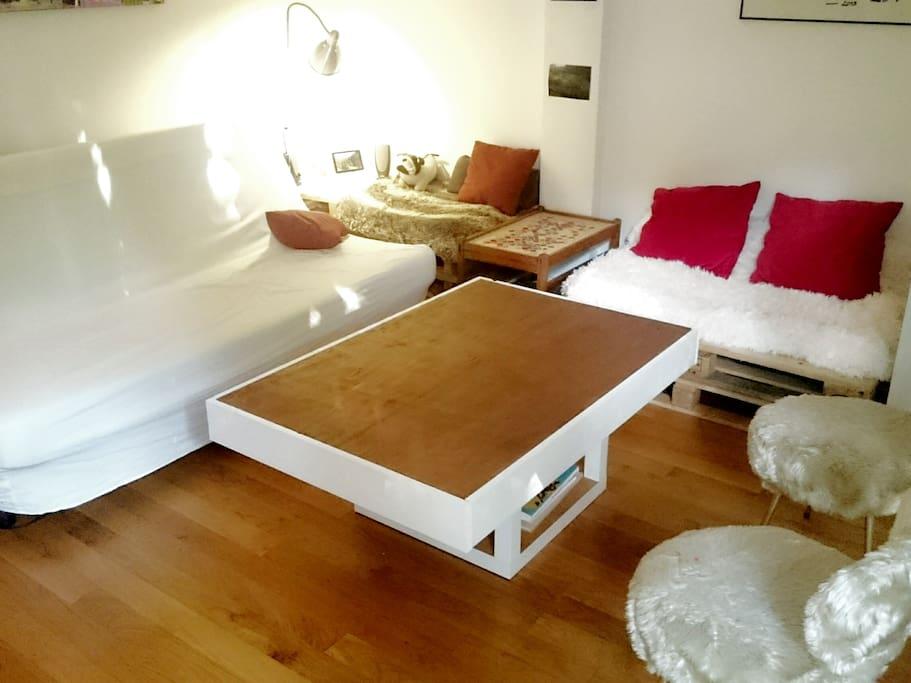 Salon - Living Room (canapé convertible lit 2 places)