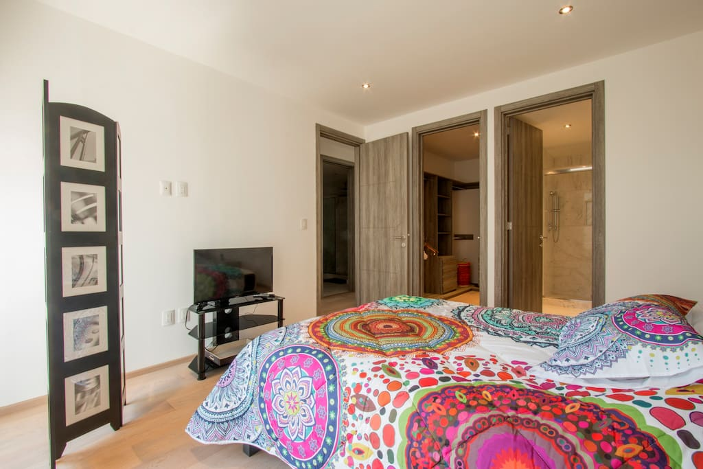 Luminous main bedroom with private bathroom, queen size bed and walk-in closet