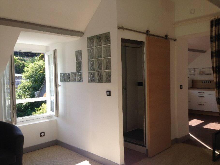 Espace chambre / salon / salle de douche