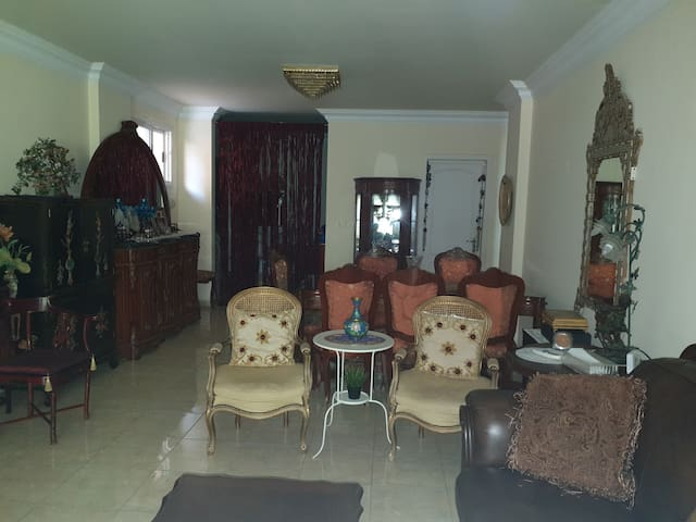 Fully furnished luxurious apartment