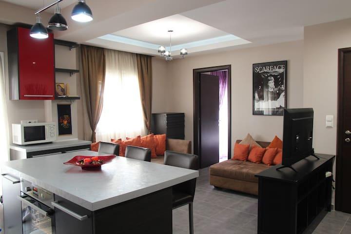 Sunny & Elegant Modern House
