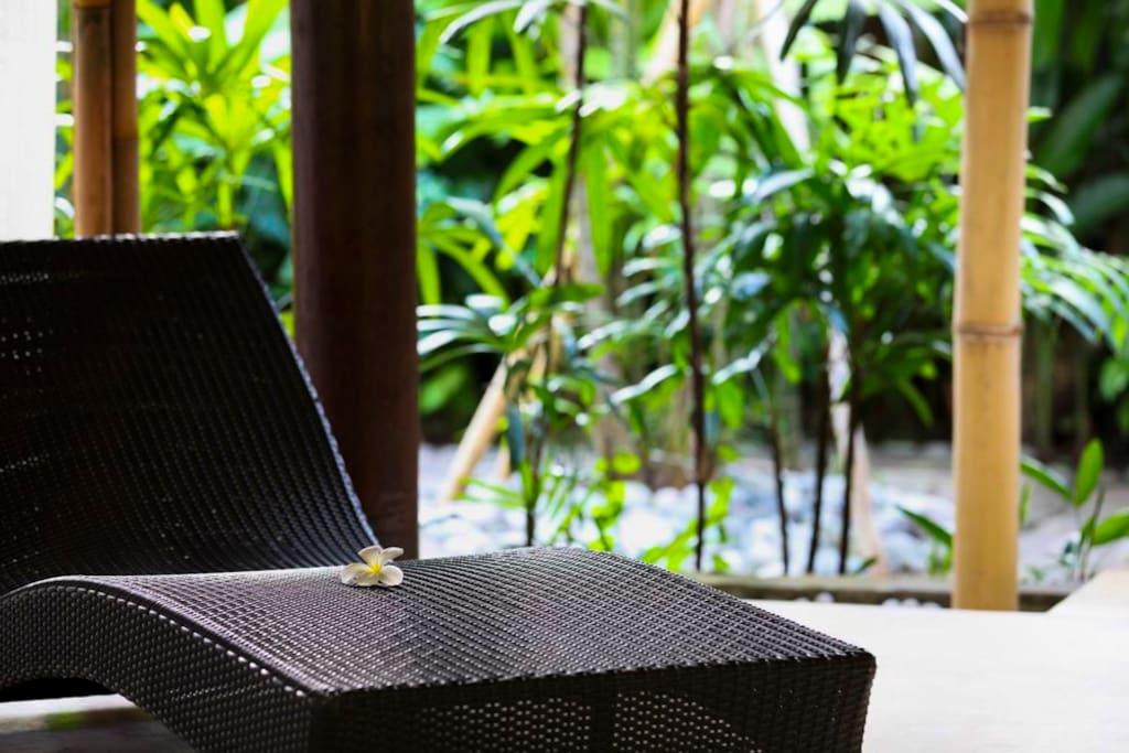 Green Bambo-ish little zen garden ryokan