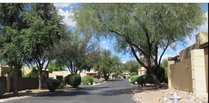 Tucson Treasure