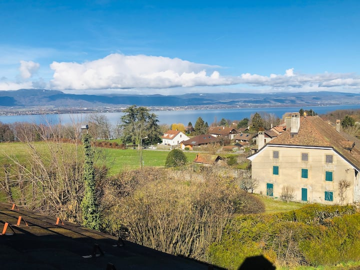 EnChens'tement, Appartement sur les bords du Léman