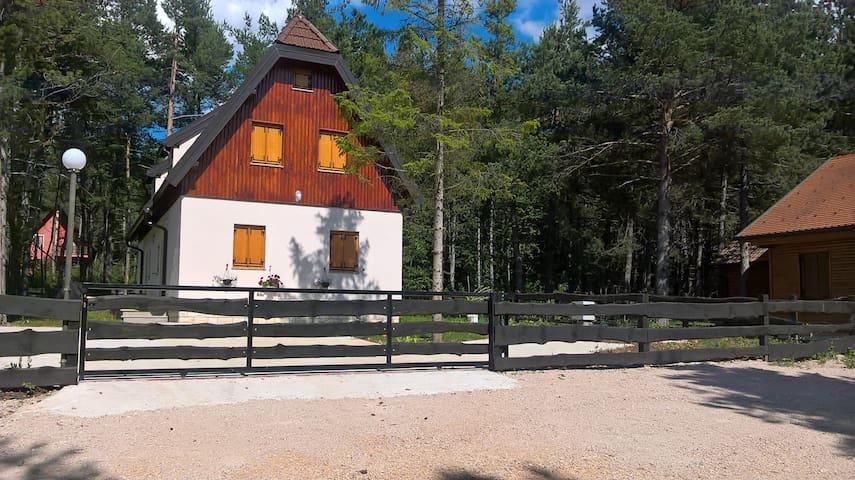 Cozy Studio Apartment 2 -Plitvice Park, Croatia - Rudanovac - Apartment