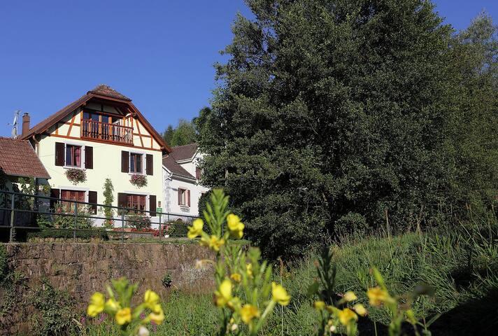 Gîte les myrtilles plein-pied au coeur de l'Alsace